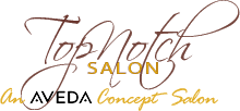 Top Notch salon Logo